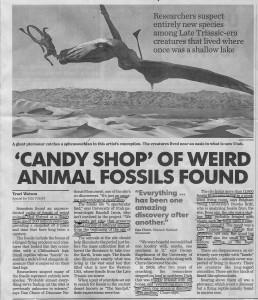 CandyShopAnimalFossils